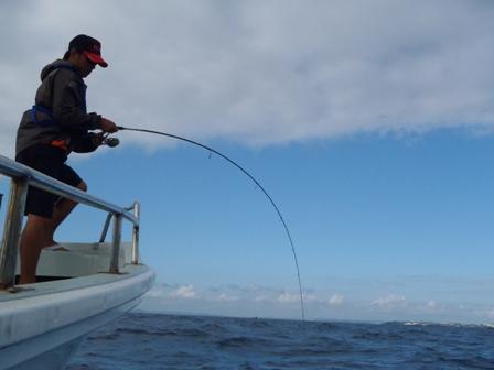 やんばる釣り日記