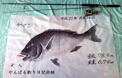 タマン魚拓